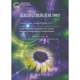 追踪清洁能源进展2017
