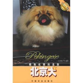 精致优雅的皇族:北京犬
