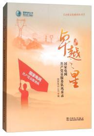 卓越之星:国家电网共产党员服务队风采录/企业文化系列丛书
