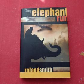 Elephant Run英文原版 大精装
