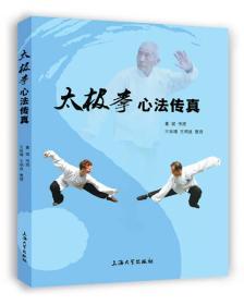 【正版】太极拳心法传真 董斌传授