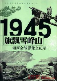 中国抗日------湘西会战