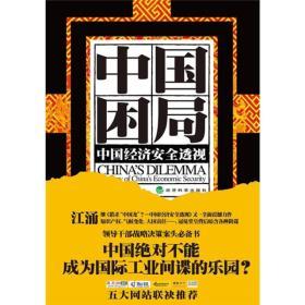 中国困局:中国经济安全透视