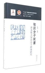 知识分子何谓:西北联大知识分子群体研究/西北联大与现代文明丛书