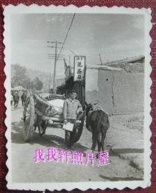 老照片:青海省西宁小桥大街,西宁洗染厂,眼镜哥,毛驴车,背面有字。【陌上花开系列】