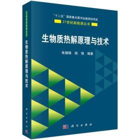 生物质热解原理与技术/21世纪新能源丛书