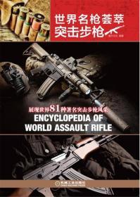 世界名枪荟萃 突击步枪