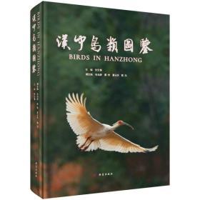 汉中鸟类图鉴