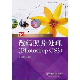 数码照片处理(Photoshop CS3)
