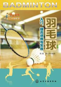 羽毛球入门、提高训练与实战/快乐体育三小球系列