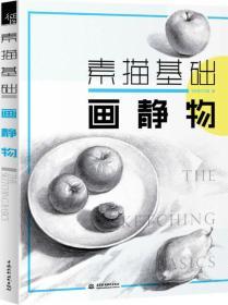 画静物-素描基础本书编委会中国水利水电出版社9787517029915