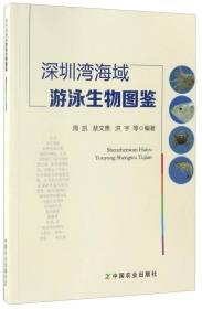 深圳湾海域游泳生物图鉴