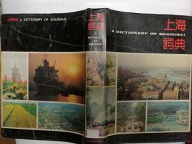 上海词典·硬精装·插图本