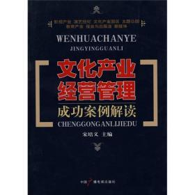 【正版书籍】文化产业经营管理成功案例解读