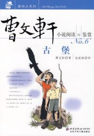 古堡-曹文轩小说阅读与鉴赏