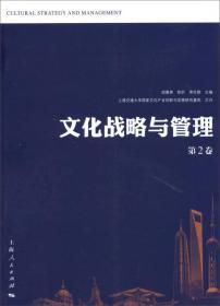 文化战略与管理 第2卷