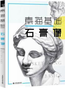 石膏像 飞乐鸟工作室 中国水利水电出版社 9787517030898