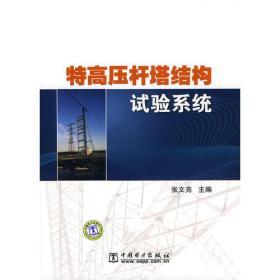 正版 特高压杆塔结构试验系统 张文亮 中国电力出版社