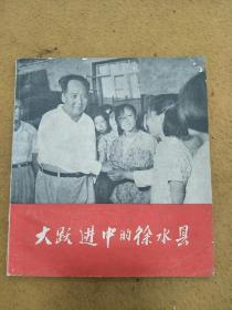 红色收藏,毛主席视察【大跃进中的徐水县】