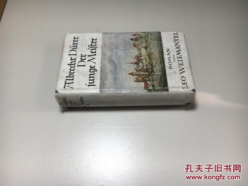 英文原版  ALBRECHT DüRER DER JUNGE MEISTER