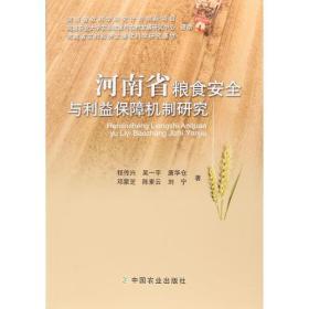 河南省粮食安全与利益保障机制研究