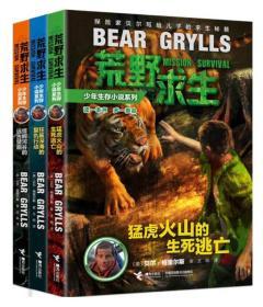 荒野求生少年生存小说系列:5猛虎火山的生死逃亡 贝尔格里