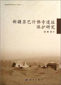 新疆苏巴什佛寺遗址保护研究