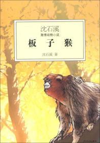 沈石溪激情动物小说:板子猴
