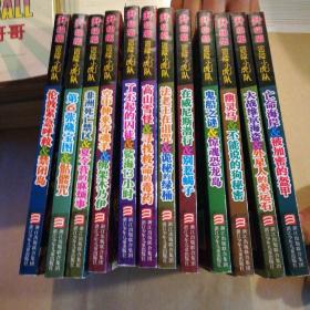 升级版冒险小虎队系列丛书:12本合售