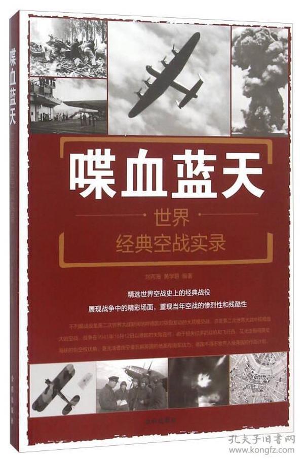 喋血蓝天:世界经典空战实录:world classic air battle record