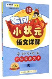暂A课标语文6上(部编版)/黄冈小状元详解