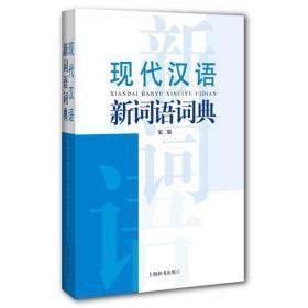 现代汉语新词语词典