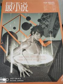 特价!最小说 2010.04