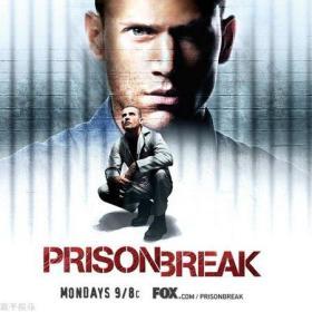 Prison Break Season 1 越狱第1季/破茧狂龙 盒装 (DVD 10张)