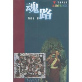 野牛角丛书·生列绎影系列:魂路