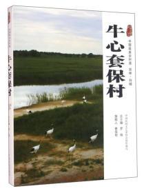 牛心套保村 中国最美古村落 吉林·白城