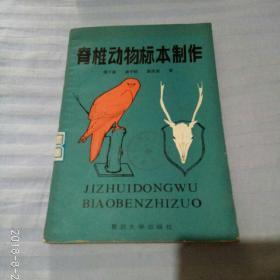 脊椎动物标本制作