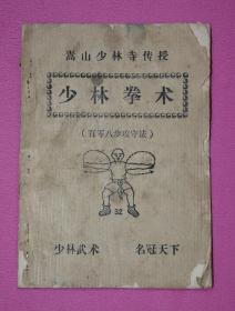 嵩山少林寺传授—少林拳术 (百零八步攻守法)