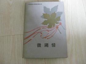 山东革命斗争回忆录丛书——微湖情