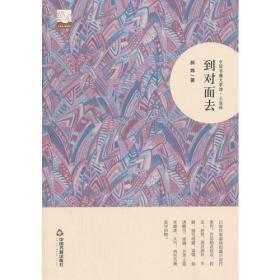 中国书籍文学馆·小说林:到对面去