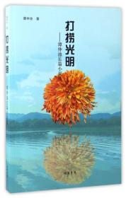打捞光明:谭仲池长篇小说选