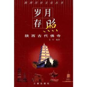 岁月存照:陕西古代佛寺(陕西历史文化丛书)