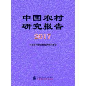 中国农村研究报告2017