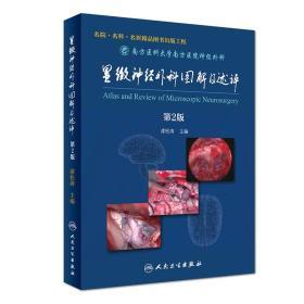 显微神经外科图解及述评(第2版)