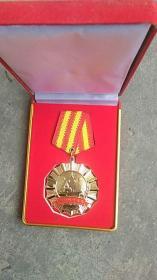 决战齐鲁之巅济临对抗特别纪念2009年个人勋章【铜制】