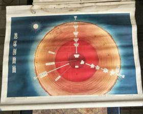 教学挂图一轴.地球挂图:地球剖面图【有】
