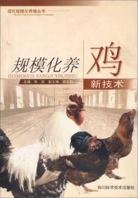 规模化养鸡新技术