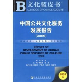 中国公共文化服务发展报告(2009)