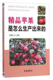 精品苹果是怎么生产出来的