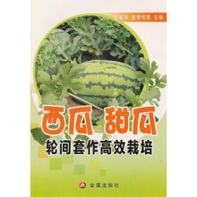 西瓜甜瓜轮间套作高效栽培